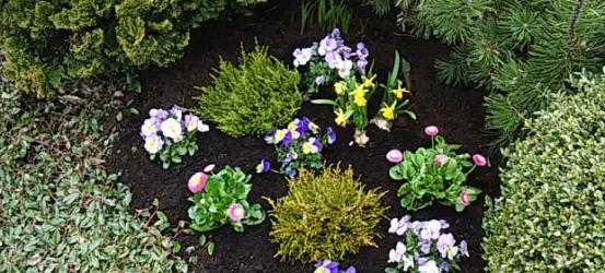 Dauer- und Wechselbepflanzung